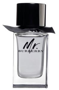 Burberry - BURBERRY MR. BURBERRY