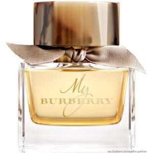 Burberry - BURBERRY MY BURBERRY